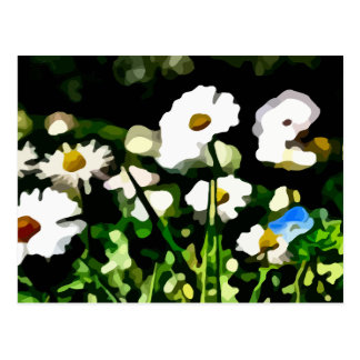 Daisies in Meadow painting Postcard