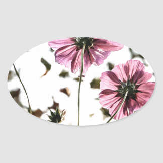Daisies in Motion Oval Sticker