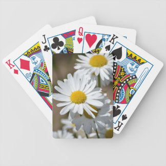 Daisies in Spring Bicycle Playing Cards