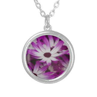 daisies in spring silver plated necklace