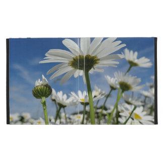 Daisies in the Sky iPad Folio Cases