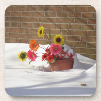 Daisies In The Snow Drink Coaster