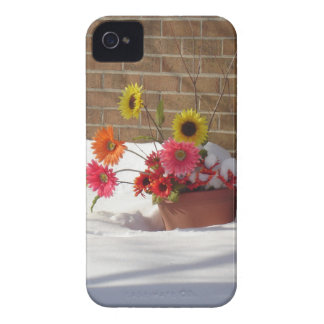 Daisies In The Snow iPhone 4 Cover