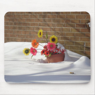 Daisies In The Snow Mouse Pad