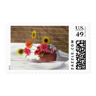 Daisies In The Snow Stamp