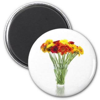 Daisies in Vase Magnet