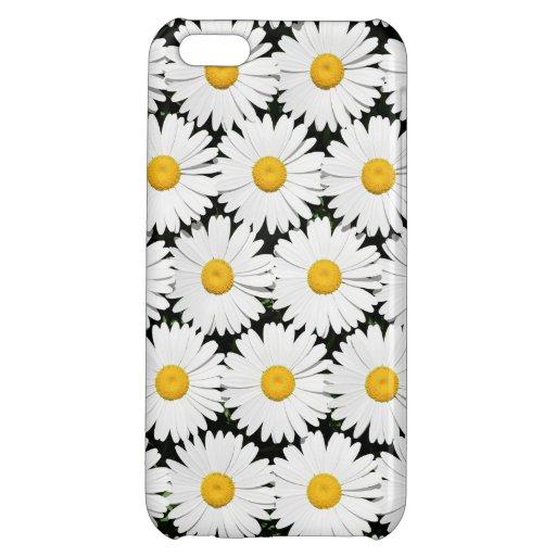 Daisies Case For iPhone 5C