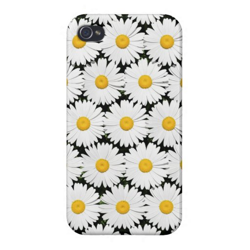 Daisies Case For iPhone 4