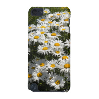 Daisies iPod Touch case
