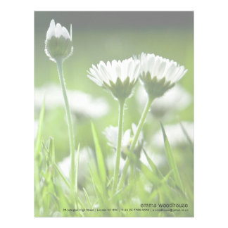 Daisies Personalized Letterhead
