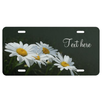 Daisies License Plate
