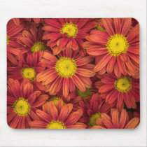Daisies mousepad, happy springtime office decor mouse pad
