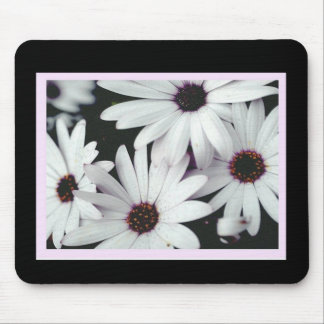 Daisies on Black Background and Pink Accents Mouse Pad