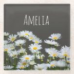 """Daisies on Grey Glass Coaster<br><div class=""""desc"""">Modern,  stylish personalized coaster with sunny daisies on dark grey background.</div>"""