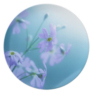 Daisies Party Plates
