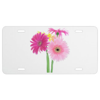 Daisies Pink License Plate