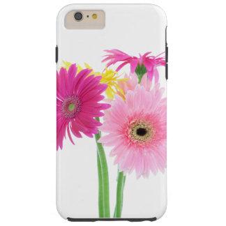 Daisies Pink Tough iPhone 6 Plus Case