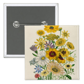 Daisies, plate 31 from 'The Ladies' 2 Inch Square Button