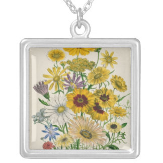 Daisies, plate 31 from 'The Ladies' Square Pendant Necklace