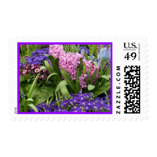 Daisies Purple Pink Hyacinths Stamp