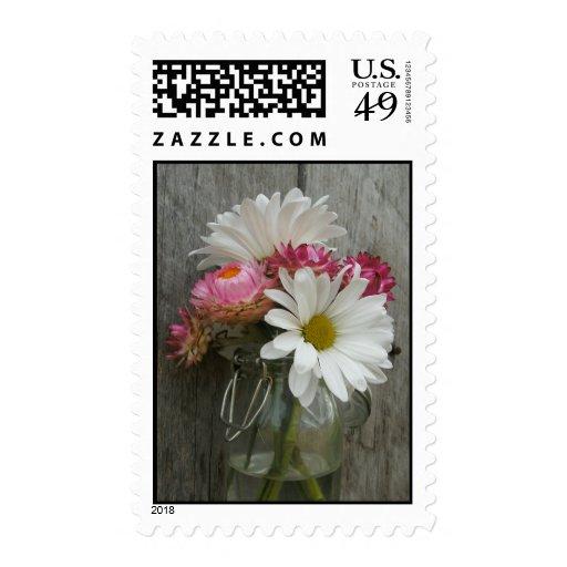 Daisies, Strawflowers, & Barnwood Postage Stamps