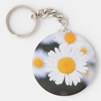 Daisiest Daisy Basic Round Button Keychain