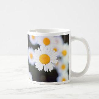 Daisiest Daisy Coffee Mug
