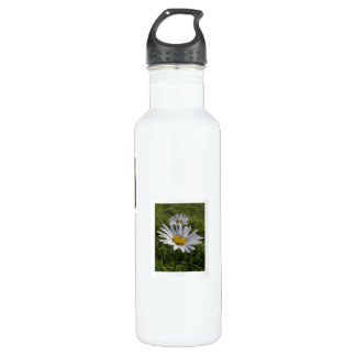 Daisy 04, 05, and 06 stainless steel water bottle