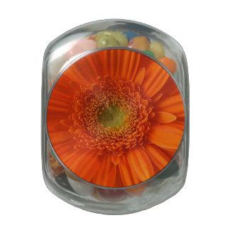 daisy-34.jpg glass jars