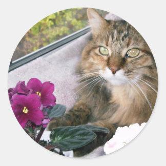 Daisy 4 classic round sticker