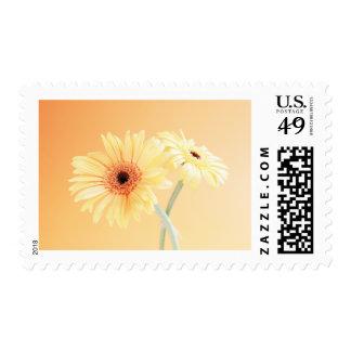 Daisy-a-lishous Postage