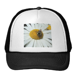 Daisy and bumble bee hat