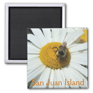 Daisy and bumble bee 2 inch square magnet