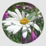 Daisy and Fireweed Classic Round Sticker
