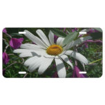 Daisy and Fireweed License Plate