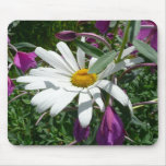 Daisy and Fireweed Mouse Pad