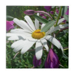 Daisy and Fireweed Tile