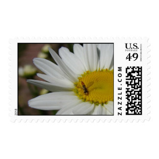 Daisy and Friend postage