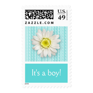 Daisy and Stripes Boy Birth Announcement Postage