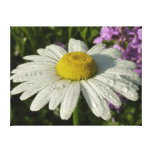 Daisy and Summer Lilac Canvas Print