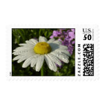 Daisy and Summer Lilac Postage