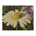 Daisy and Summer Lilac Wood Wall Art