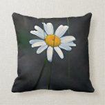 Daisy Art Pillow
