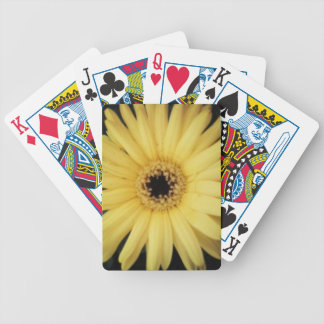 Daisy backed playing cards