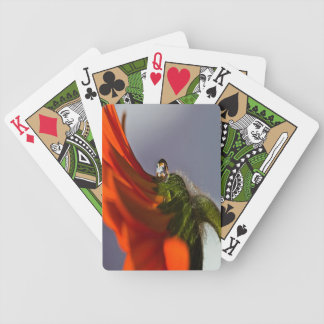 Daisy Bicycle Playing Cards