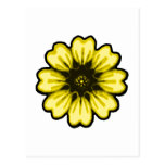 Daisy Black Yellow transp The MUSEUM Zazzle Gifts Postcard