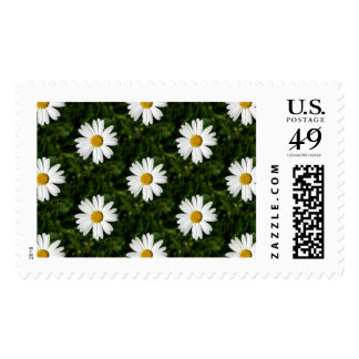 Daisy Bloom seamless pattern + your ideas Postage Stamp