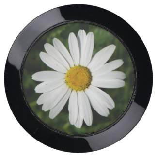 Daisy Bloom seamless pattern + your ideas USB Charging Station