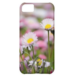 Daisy Blossoms Elegant Romantic Wedding Parties Case For iPhone 5C
