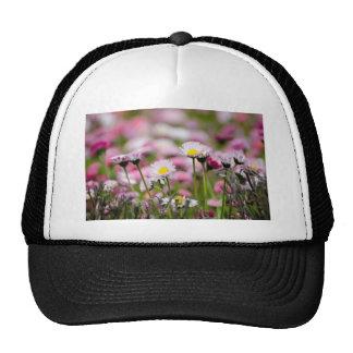 Daisy Blossoms Elegant  Romantic  Wedding Parties Trucker Hats
